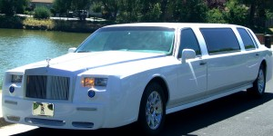white limousine  near lake